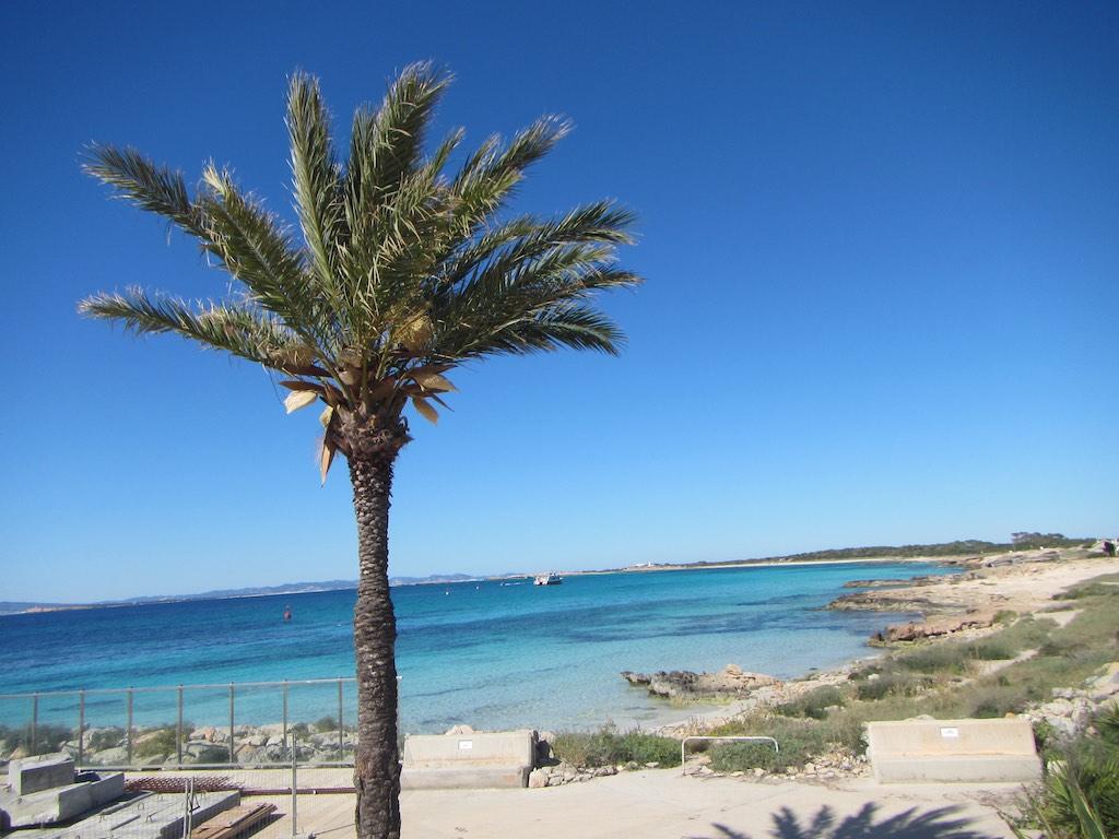 Türkise Wasser mit Palme vor Savina