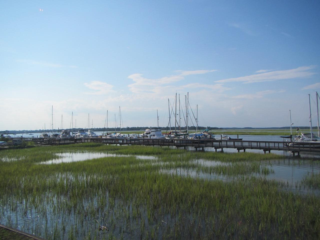 Bei Hochwasser das Schilf vor der Marina