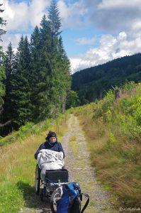 Schöner Weg nach Bärental